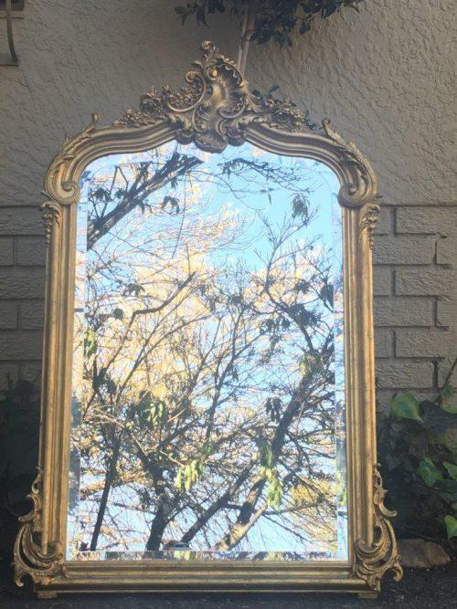 20th Century Rococo Style Giltwood Pier Mirror